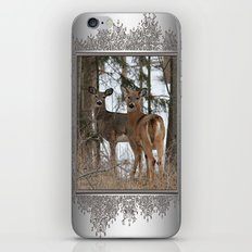 White-Tailed Deer in Winter iPhone & iPod Skin