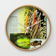 Red-Eared Turtle Wall Clock