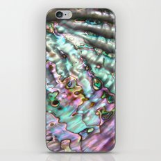 Abalone Shell iPhone & iPod Skin