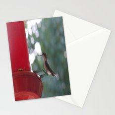 Hummingbird w/ bokeh Stationery Cards
