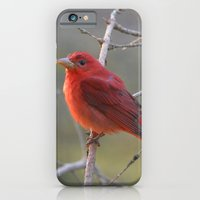 A Summer Tananger iPhone 6 Slim Case