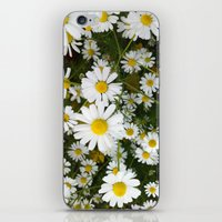 Daisys iPhone & iPod Skin