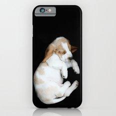 Basset Hound Puppy iPhone 6 Slim Case