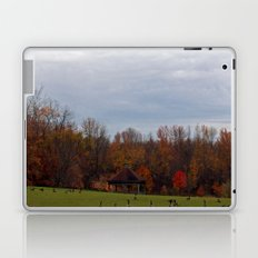 Geese in the Park Laptop & iPad Skin