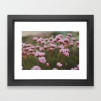 Pale Pink Framed Art Print