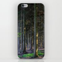 Fairytale Forest iPhone & iPod Skin