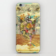 CANYON VISIONS iPhone & iPod Skin
