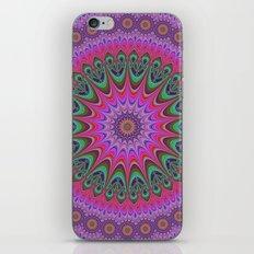 Mandala Ornament iPhone & iPod Skin