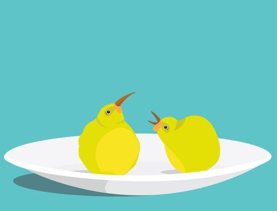 A Pear of Birds Art Print