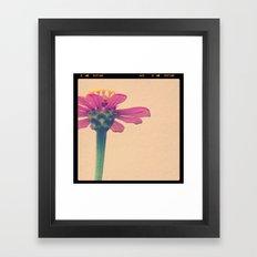 FLOWER 017 Framed Art Print