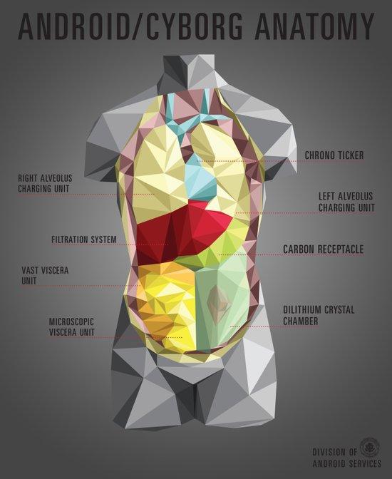 Android/Cyborg Anatomy Art Print