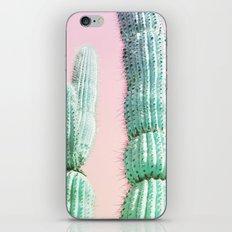 Cactus Pop iPhone & iPod Skin