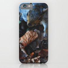 Autumn Squirrel  Slim Case iPhone 6s