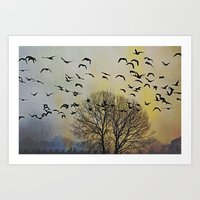 Bird Watching  - JUSTART… Art Print