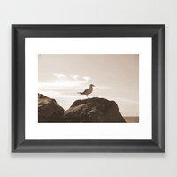 Bird's Eye View! Framed Art Print