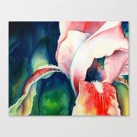 Tropical Iris Canvas Print