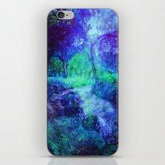 Creekbed iPhone & iPod Skin