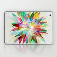 Colorful 6 Laptop & iPad Skin