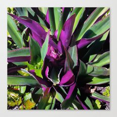 Purple and Green Canvas Print