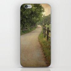 Along the Path iPhone & iPod Skin