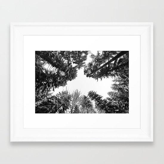 snow + trees Framed Art Print