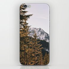 Snow Mountain in the Trees iPhone & iPod Skin