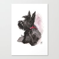 Scottish Terrier posing Canvas Print