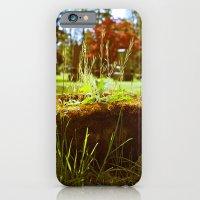Cemetery planter iPhone 6 Slim Case