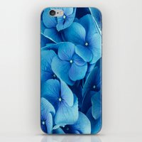 French Blue iPhone & iPod Skin