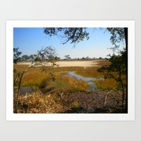 Beautiful Swamp Art Print