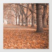 Autumn in Melbourne Canvas Print