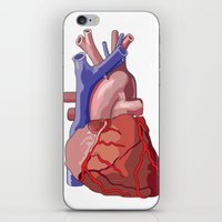 Vector Heart iPhone & iPod Skin