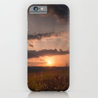 In the middle of the Summer iPhone 6 Slim Case