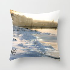 On the Banks of the Charles Throw Pillow