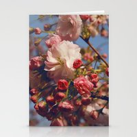 Blossoms in Beijing Stationery Cards