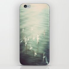 Discovery of Consciousness iPhone & iPod Skin