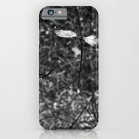 iPhone & iPod Case featuring sprouting.. by Marga Parés