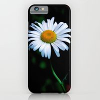 iPhone Cases featuring A daisy a day keeps the blues away by Brown Eyed Lady