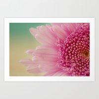 Pink bursts, Floral Macro Photography Art Print