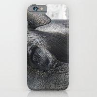 Elephant Eye iPhone 6 Slim Case