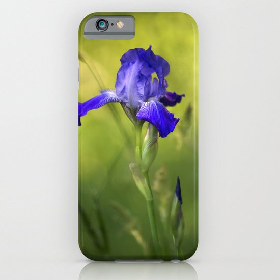 Violet Iris Flower  iPhone & iPod Case