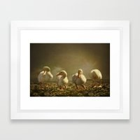 Dancing On Daisies Framed Art Print