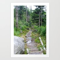 Color - Old Mountain Pat… Art Print