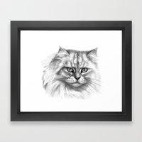 Expressive glance cat G132 Framed Art Print