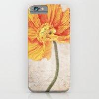 Bella orange iPhone 6 Slim Case