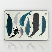 Whales and Porpoises sea life ocean animal nature animals marine biologist Andrea Lauren Laptop & iPad Skin