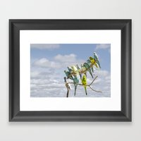Parakeets Perched On A L… Framed Art Print