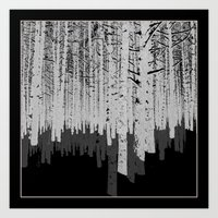 Tree Shadow Art Print