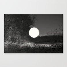 sleepwalking around the sun again Canvas Print