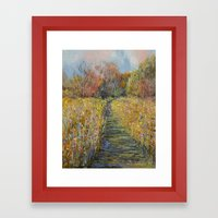 Path In The Meadow Framed Art Print